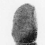 arch fingerprint