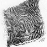 arch-thumb