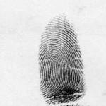 a loop fingerprint
