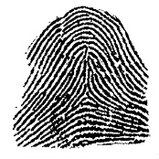 Do you have one or more tented arch fingerprint?