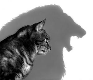 inner predator