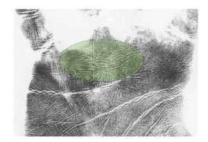 venus girdles palm markers indicating fantasy and sensitivity