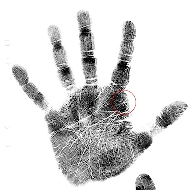 Jupiter star, palmistry, palm reading, how to read a palm