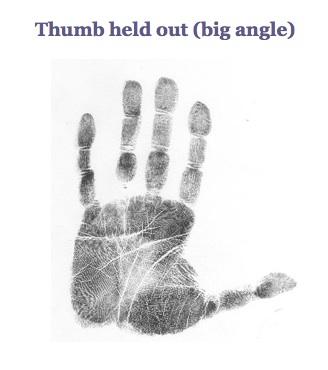 large thumb angle palm marker
