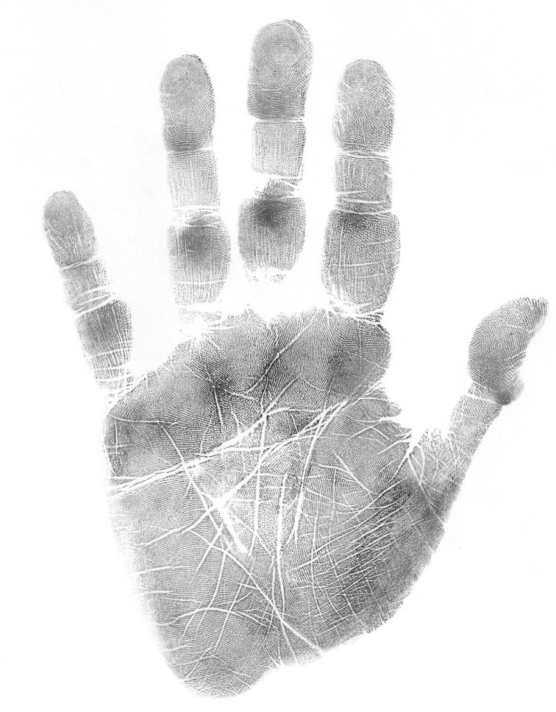 how to read a palm, palmistry