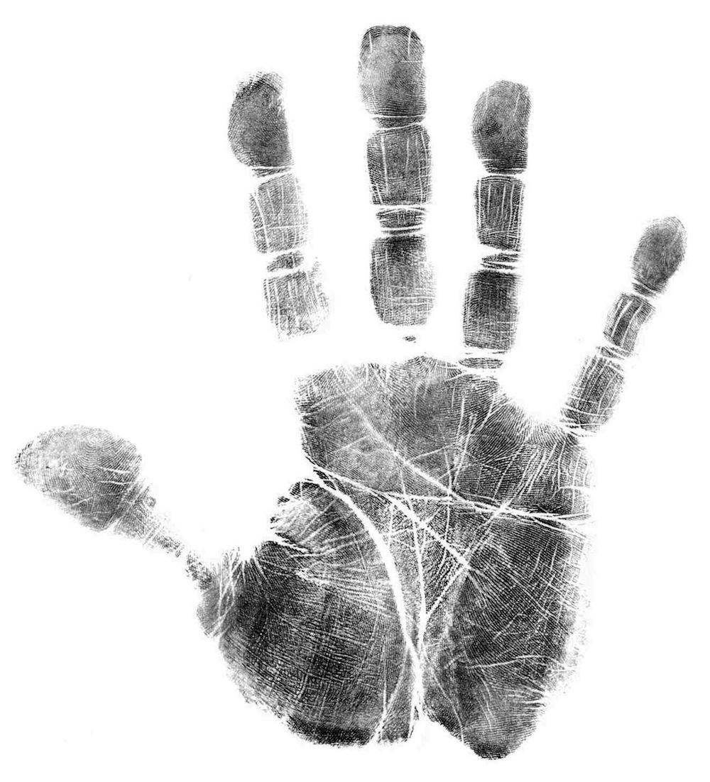 advanced hand shape types