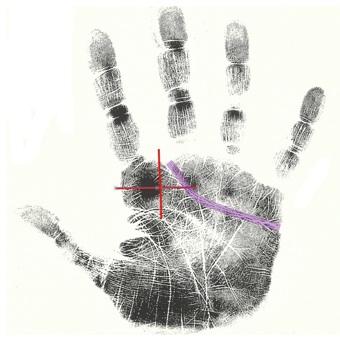 free hand analysis tip