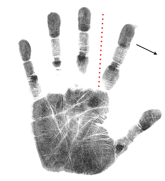 palm marker tolling Jupter finger, hand analysis free class
