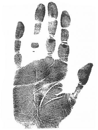 long narrow palm long fingers hand analysis classes