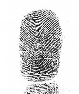 tented arch fingerprint tented-arch-2 school of wisdom  sc 1 st  Hand Analysis Online & 4 Earth Schools « Hands Online