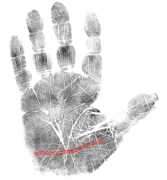 Co-dependency palmistry, hand analysis classes, palm reading classes, how to read a palm