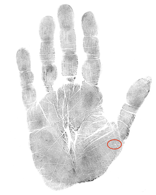 hand analysis classes and free tips