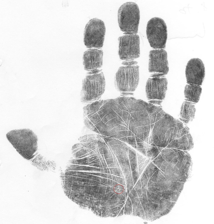 how to read a palm, scientific palmistry classes, scientific hand analysis classes, palm reading classes
