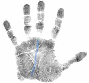 hand analysis tip on strong fate line, career line, online hand analysis classes