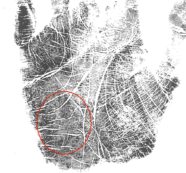 LifePrints palm marker, what is a moon loop