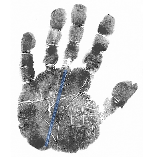 scientific hand analysis course or classes, palmistry classes online