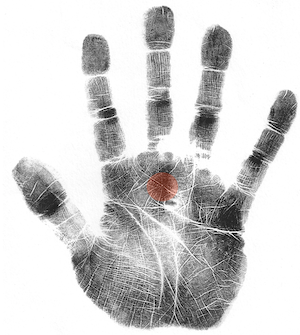 scientific hand analysis classes, hand analysis classes online