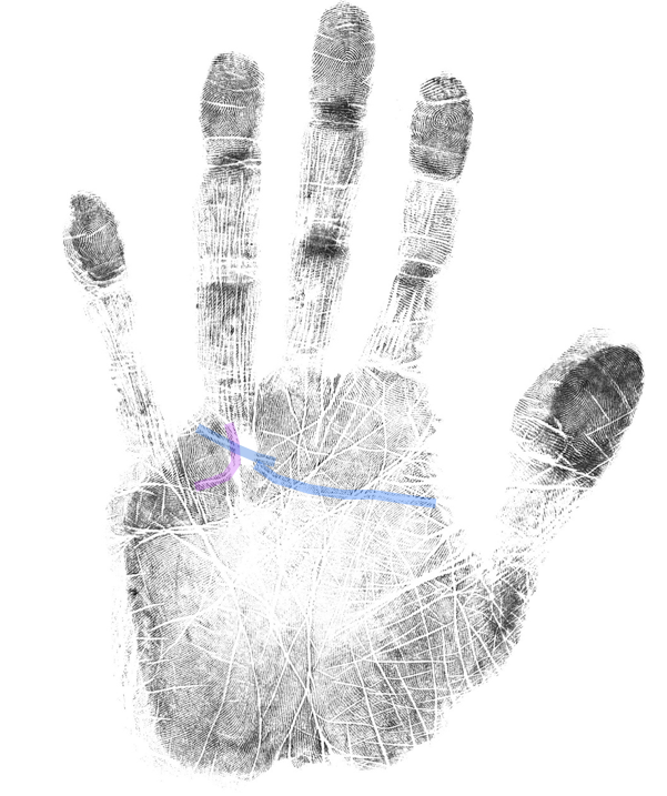 inspirational creativity, how to read a palm, hand analysis classes