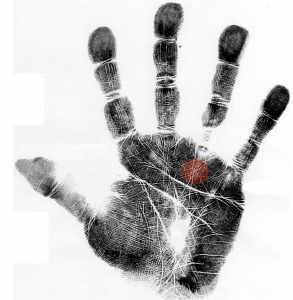 scientific hand analysis classes, how to read a palm, creativity in hands