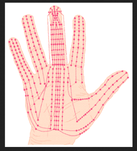 electromagnetic influence on palm lines, how to read a palm, understanding palm lines, how hand analysis works, neuropalmistry