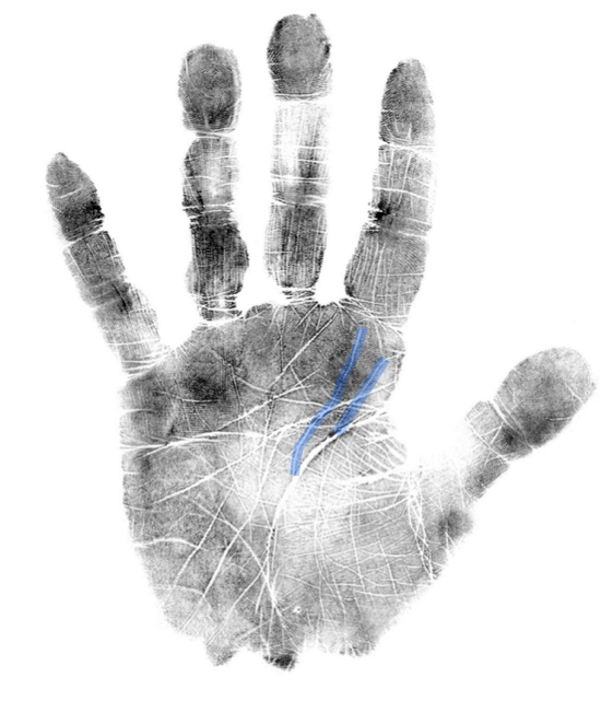 how to read a palm, Jupiter lines, IIHA hand analysis,,scientific hand analysis classes online