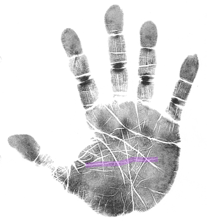 life purpose hand analysis classes online, scientific hand analysis, how to read a palm