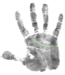 hand analysis free calss
