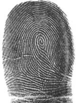 decode fingerprints