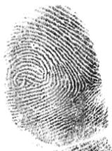 tricky fingerprints