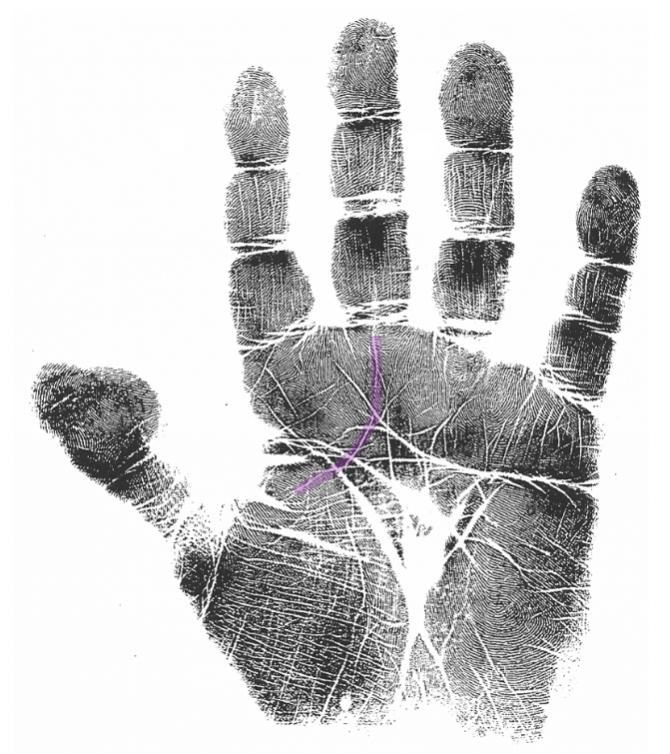 heart & spiritual journey markers 4, hand analysis classes